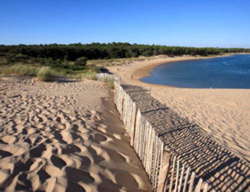 TOP 5 des activités à faire en famille en Vendée cet été