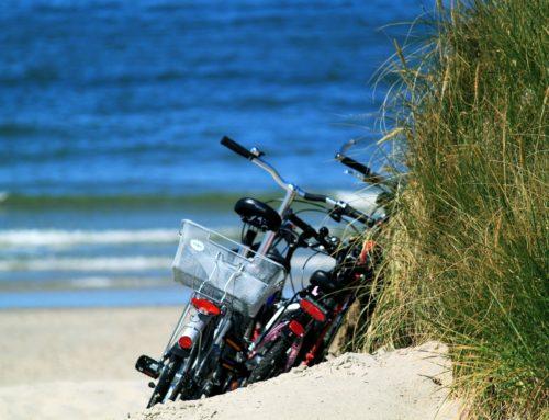 Des idées d'activités pour vos vacances !