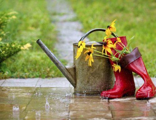 Top 5 des activités à faire lorsqu'il pleut