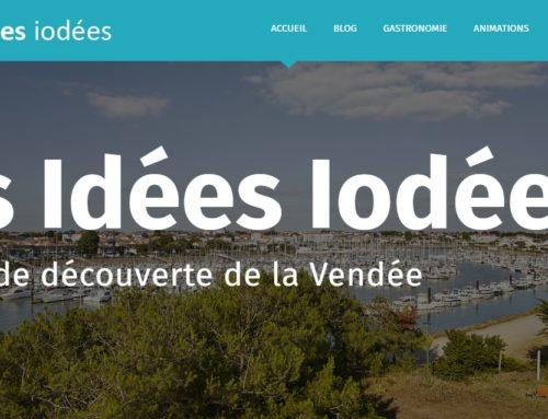 A blog to share our experiences in Vendée