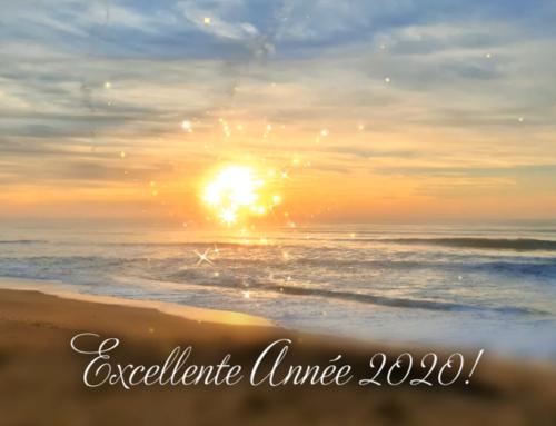 Une belle année 2020 en Vendée!