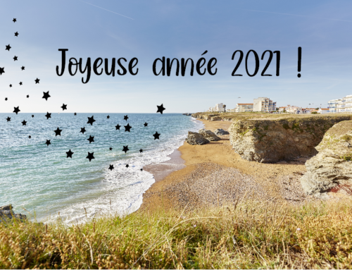 A happy new year 2021 in Vendée !
